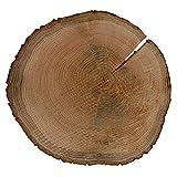 Riss Rindenbrett Eiche rund - Rissbrett geschliffen Baumscheibe Rindenscheibe, Brettgröße:Ø ca. 24cm