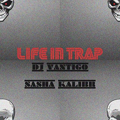 Sasha Zebra (Life in Trap)