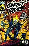 Ghost Rider: Danny Ketch Classic Volume 2 TPB (Graphic Novel Pb) by Mark Texeira (Artist), Larry Stroman (Artist), Javier Saltares (Artist), (23-Jun-2010) Paperback