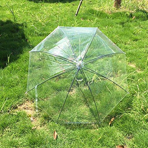 Transparente Regenschirm Kinder Kinder Regenschirm Tragbare Licht Regenschirm Leistung Fotoshooting Requisiten