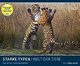 STARKE TYPEN: WELT DER TIERE 2017 - mit witzigen Bildunterschriften - Tier-Kalender 60 x 50 cm