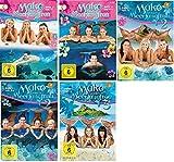 Mako - Einfach Meerjungfrau: Staffel 1-3