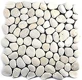Mosaik Fliese Flußkiesel Steinkiesel Kiesel flach weiß für WAND BAD WC DUSCHE KÜCHE FLIESENSPIEGEL THEKENVERKLEIDUNG BADEWANNENVERKLEIDUNG Mosaikmatte Mosaikplatte