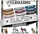 LEDASS92 Hundehalsband mit Namen Strass Halsband Name Strassbuchstaben Swarovski Elements (L - 35cm - 43cm Halsumfang verstellbar, Weiss)