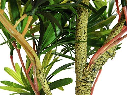 artplants Künstlicher Podocarpus Amando, grün, 90 cm – Kunstpflanze