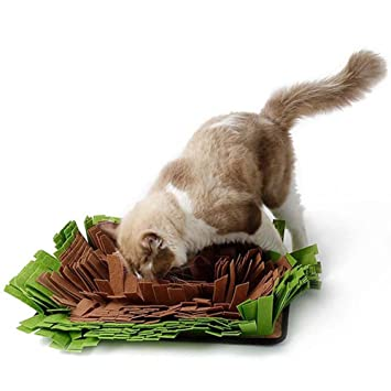 jouet chat odeur