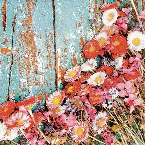 Chic Daisies 33 x 33 cm 3 lagig, Lunch Servietten Napkins Tissues, für den gedeckten Tisch, Party, Fest, Thema, Veranstaltung, Floral, Blumen (Themen Für Veranstaltungen)