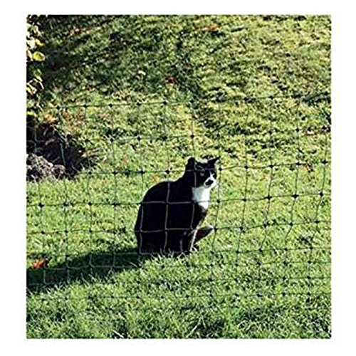 Euro-filet de protection pour chats 75/1-10393 vert 25 m