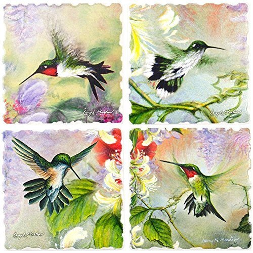 Nature's Gift of Feathers - Hummingbird Square Coaster assorted Set of 4 -code 727 by AbsorbaStone Absorbastone Coaster Set