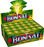 24 Bonsai - Mini -Fontänen