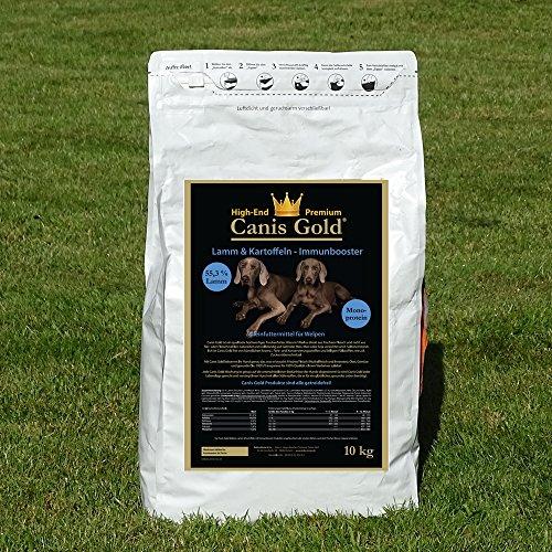 Canis Gold 10 kg Welpen | Junior Medium-Large Lamm & Kartoffel | 55,3{7ed53520e59b9a68c678f7e792b8811d1262bb133a7da747e816be0eca0a2898} Fleisch | Monoprotein