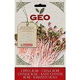 Geo Rabanito VRV1403  - Semillas para germinar, 12.7 x 0.7 x 20 cm, color marrón