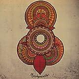 Sammal: Myrskyvaroitus [Vinyl LP] (Vinyl)