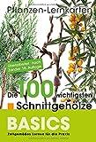 Pflanzen-Lernkarten: Die 100 wichtigsten Schnittgehölze: 100 Lernkarten mit Lernkartenbox - Karl-Michael Haake
