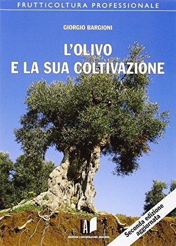 Photo Gallery l olivo e la sua coltivazione