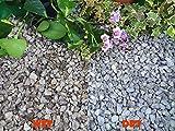 Einstreu Kies Stein Schiefer Körpernähe Unkraut Garten Terrasse Weg Pflanze Topping–Dove Grau peakstone (10–20mm), 1 kg