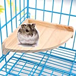 XMSSIT Bird Platform Perch Stand Wood for Small Animals Parrot Parakeet Conure Cockatiel Budgie Gerbil Rat Mouse Chinchilla Hamster Cage Accessories Exercise Toys Sector 10