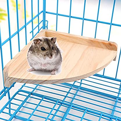 XMSSIT Bird Platform Perch Stand Wood for Small Animals Parrot Parakeet Conure Cockatiel Budgie Gerbil Rat Mouse Chinchilla Hamster Cage Accessories Exercise Toys Sector 3