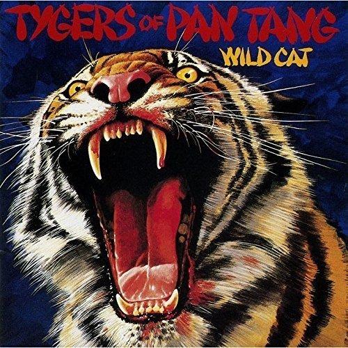 wild-cat-shm-cd