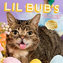 Lil Bub's One-of-A-Kind 2018 Calendar