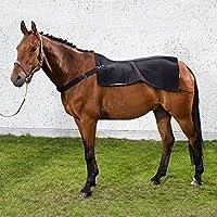 Back on Track Rückenwärmer Royal mit Welltex, schwarz