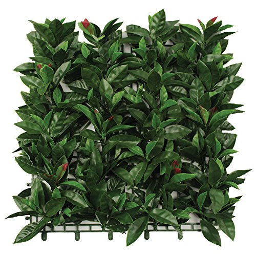 Evergreen X4 haie synthétique Red Green Plus 50 x 50 cm synthétique haie Artificielle 48657