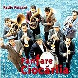 Radio Pascani -