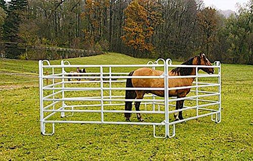 Weidetore und Weidepanels Zaunelement 360 cm Schnellkettenverschluss Weidezaun - 2