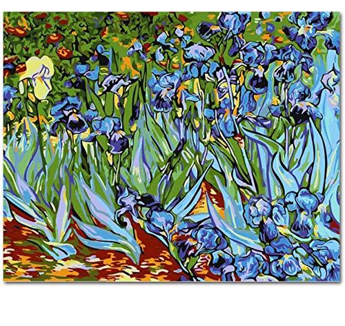 QAZZSF Bild An Der Wand Acrylmalerei Nach Zahlen DIY Leinwand Malerei Kunst Färbung Nach Zahlen Abstract Iris 40X50CM - Abstract Iris