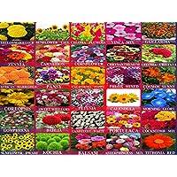 AARNA EXOTICS 30 variety flower seeds combo 3100+Seeds