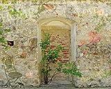 1art1 63841 Mauern - Romantische Garten-Mauer Poster Kunstdruck 50 x 40 cm