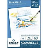 Canson 200005788 10 sheets - art paper (10 sheets)