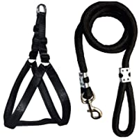 Tyson Nylon Padded Adjustable Dog Harness and Leash Rope (0.75 Inch) (Small, Black)