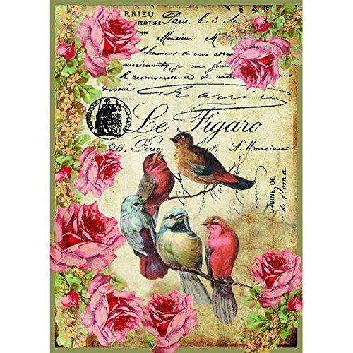 carta-di-riso-a4-le-figaro-uccellini-stamperia-dfsa4034