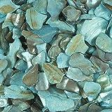PERLMUTT Stücke ca 10-20 mm 330 ml. Perlmutter, Muschel, Muscheln.HELLBLAU -91