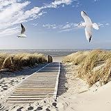 Artland Qualitätsbilder I Glasbilder Deko Glas Bilder 20 x 20 cm Landschaften Strand Meer Foto Blau D8PN Nordseestrand auf Langeoog mit Möwen