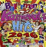 Ballermann Karneval Hits 2016