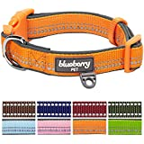 Blueberry Pet Soft & Comfy 3M Reflective Spring Pastel Baby Orange Adjustable Padded Dog Collar, Neck 37cm-50cm, Medium, Collars for Dogs, Matching