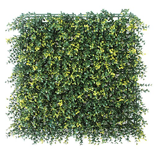 Evergreen X4 haie synthétique pitosforo 50 x 50 cm synthétique haie Artificielle Jardin 48659