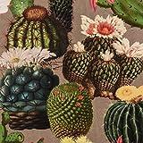 Samtstoff Dekostoff Italian Velvet Samt Kaktus grau grün pink 1,45cm