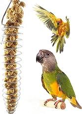 Fogun Obst und Gemüse Feeder Korb aus Edelstahl für Vögel, Papageien, Wellensittiche, Sittiche, Nymphensittiche