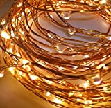 Quace Copper String Led Light 10M 100 LED Battery Operated Wire Decorative Fairy