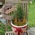 Gartenzaubereien Elch und Tanne zum Stecken aus Edelrost von Po auf Du und dein Garten