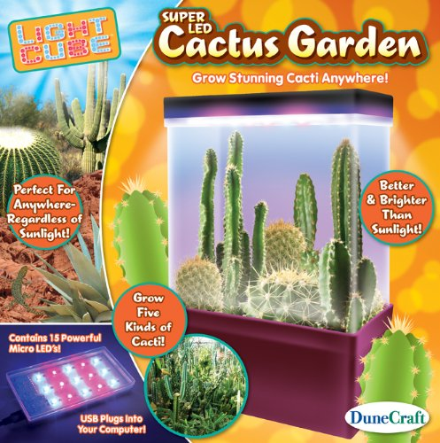 s Garden Light Cube (Cactus Handwerk)