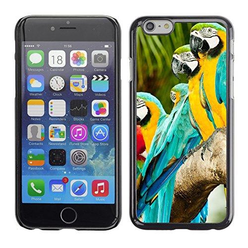 Gold Und Ara Blau (Hülle Case Schutzhülle Cover Premium Case // V00002993 Blau und Gold Ara Papageien // Apple iPhone 6 6S 6G 4.7