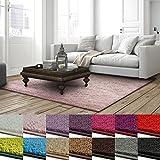Shaggy Teppich Barcelona | weicher Hochflor Teppich für Wohnzimmer, Schlafzimmer und Kinderzimmer | mit GUT-Siegel und Blauer Engel | verschiedene Größen | viele moderne Farben | 160x160 cm | Rose