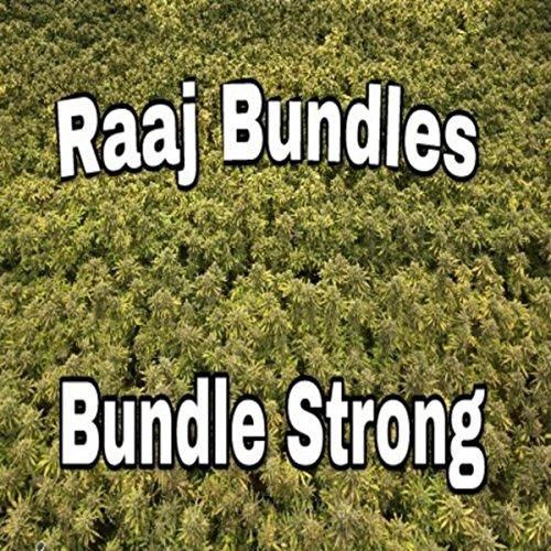 Bundle Strong [Explicit] Vision Audio Bundle