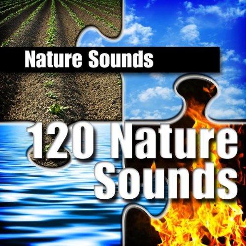 Gentle, Quiet Brook Nature Sound
