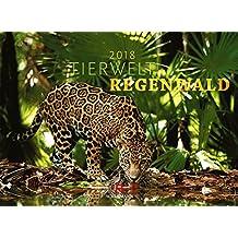 Tierwelt Regenwald 2018 (Tierwelten)
