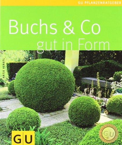 Preisvergleich Produktbild Buchs & Co. gut in Form